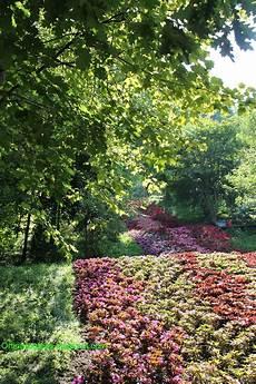i giardini di orti in progress i giardini di sissi