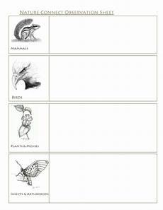 nature observation worksheets 15139 wildlife observation work sheet schoolwithdad