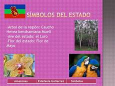 flor emblematica del estado trujillo venezuela 9a estefania gutierrez amazonas