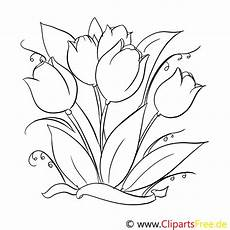 tulpen malvorlage gratis