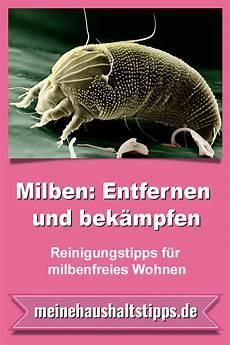 Milben Wohnung by Milben Entfernen Und Bek 228 Mpfen Reinigungstipps F 252 R