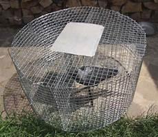 la gabbia annunci gabbia cattura corvidi modello gabbia marca larsen
