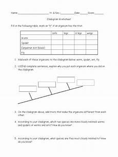 phylogenetic trees worksheet answer key free printables