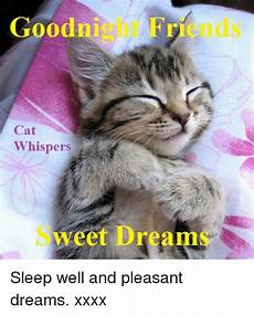 goodnight friends cat whispers sweet dreams sleep well and pleasant dreams xxxx friends meme