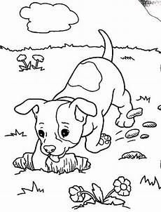 baby boxer digging coloring pages baby boxer