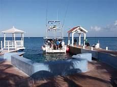 dive cozumel packages dive paradise scuba diving hotel acommodation