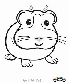 guinea pig coloring pages at getcolorings free