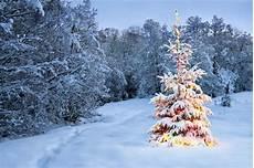 weihnachtskarten verschicken