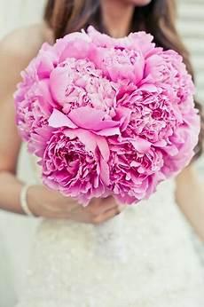 wedding flower glossary illustrated