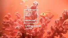 Farbe Des Jahres 2019 - pantone farbe des jahres 2019 living coral orange