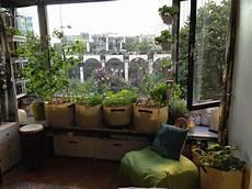 potager appartement potager int 233 rieur appartement recherche plantes