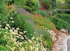 Couvre Sol Vivaces Et Plantes Alpines Pour Jardin En