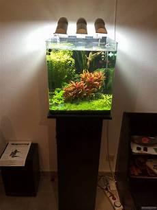 nano cube 60l dennerle flowgrow aquascape aquarien datenbank