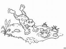 Ausmalbild Frosch Am Teich Frosch Springt In Den Teich Ausmalbild Malvorlage Comics