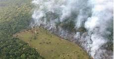 zerstörte natur vorher nachher schlimmere zerst 246 rung als durch rodung versteckte br 228 nde