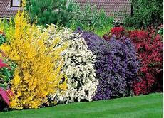 3 Conseils Pour Un Jardin 224 L Abri Des Regards Carr 233 De