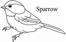 Malvorlage Vogel Spatz Bildergebnis F 252 R Ausmalbild Vogel Bird Ausmalbilder