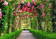 Terbaru 26 Foto Gambar Taman Bunga Gambar Bunga Indah