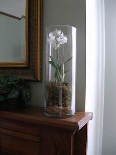 Decorating Ideas Clear Glass Vases by Using Cylinder Clear Glass Vase For