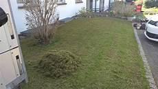 Rasenb 252 Ther Rasenpflege