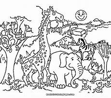 petting zoo animals coloring pages 17213 free zoo coloring pages at getcolorings free printable colorings pages to print and color