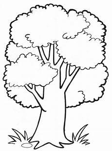 malvorlage baum kostenlos baum zeichnung baummalerei