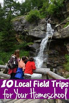 10 fun local field trips for your homeschool