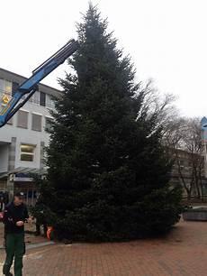 weihnachtsb 228 ume f 252 r firmen gel 228 nde foto im hamburg web