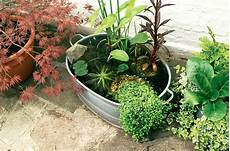 Make A Mini Pond In Pictures Gardenersworld