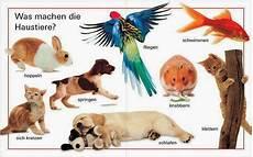 was sind haustiere mit frau virginia d al 242 wortschatz tiere