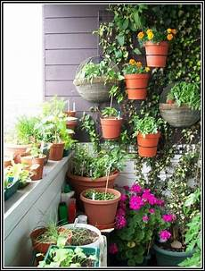tomaten pflanzen auf dem balkon balkon house und dekor
