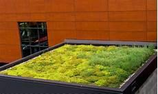 toit terrasse vegetal toiture v 233 g 233 talis 233 verte