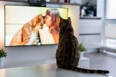 beste ger 228 te 2018 tv mini beamer soundbar und mehr