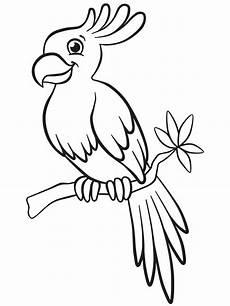 Ausmalbilder Kostenlos Zum Ausdrucken Papageien Sch 246 Ne Malvorlagen F 252 R Kinder Beliebte Bilder Zum Ausmalen