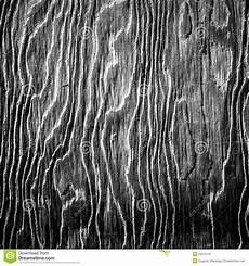 black white wood black and white artistic wood texture stock image image