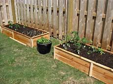 do it yourself ideen garten white ten dollar cedar raised garden beds diy projects
