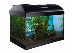superfish home 8 led komplett set nano aquarium 8 liter