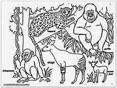 jungle animal coloring pages printable get coloring pages