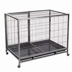 gabbie per cani da interno gabbia per cani tabby l zooplus