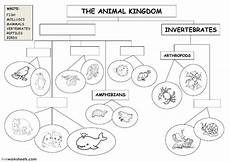 animal kingdom worksheets middle school 13932 the animal kingdom classification diagram animal classification diagram worksheet
