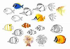 Malvorlagen Fische Meer Ausmalbilder Fische Krebse Seepferdchen Kraken Quallen