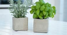 Diy Pflanzen Cubes Aus Beton Sch 246 N Bei Dir By Depot
