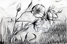 disegni di fiori a matita primavera in bianco e nero disegni ritratti