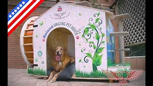 How To Make An Amazing DIY Dog House And Cat Jungle Gym