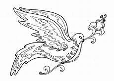 beautiful bird drawing at getdrawings free