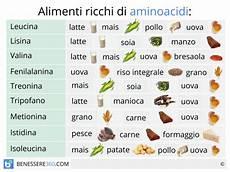 alimenti contengono lisina aminoacidi e proteine mattoni fondamentali per il