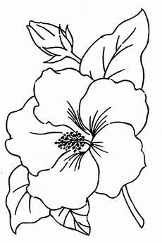 Ausmalbilder Hawaii Blumen Ausmalbilder Kostenlos Hibiskus Malvorlagen Vol 5301