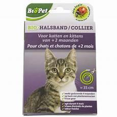 collier anti tique chat collier bio pour chats provence outillage