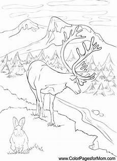 landscape coloring page 14