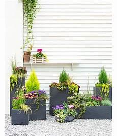 ganzjahresbepflanzung für balkonkästen kunststoff blumenkasten kubus 27 x 80 x 30 cm anthrazit